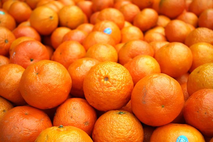 オレンジのマネジメント